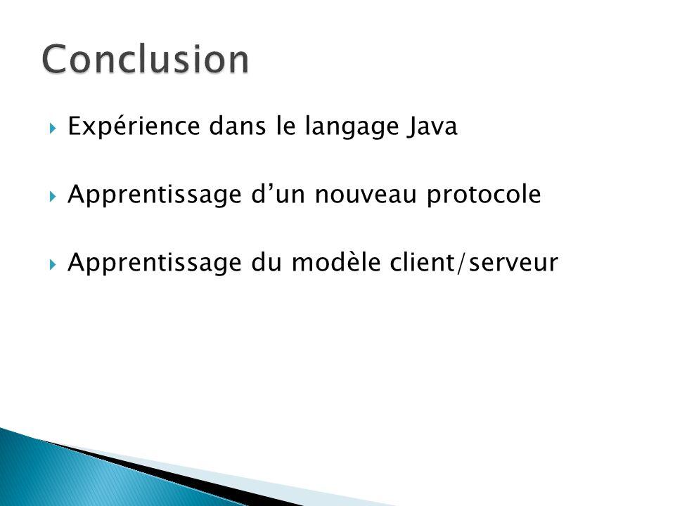 Expérience dans le langage Java Apprentissage dun nouveau protocole Apprentissage du modèle client/serveur