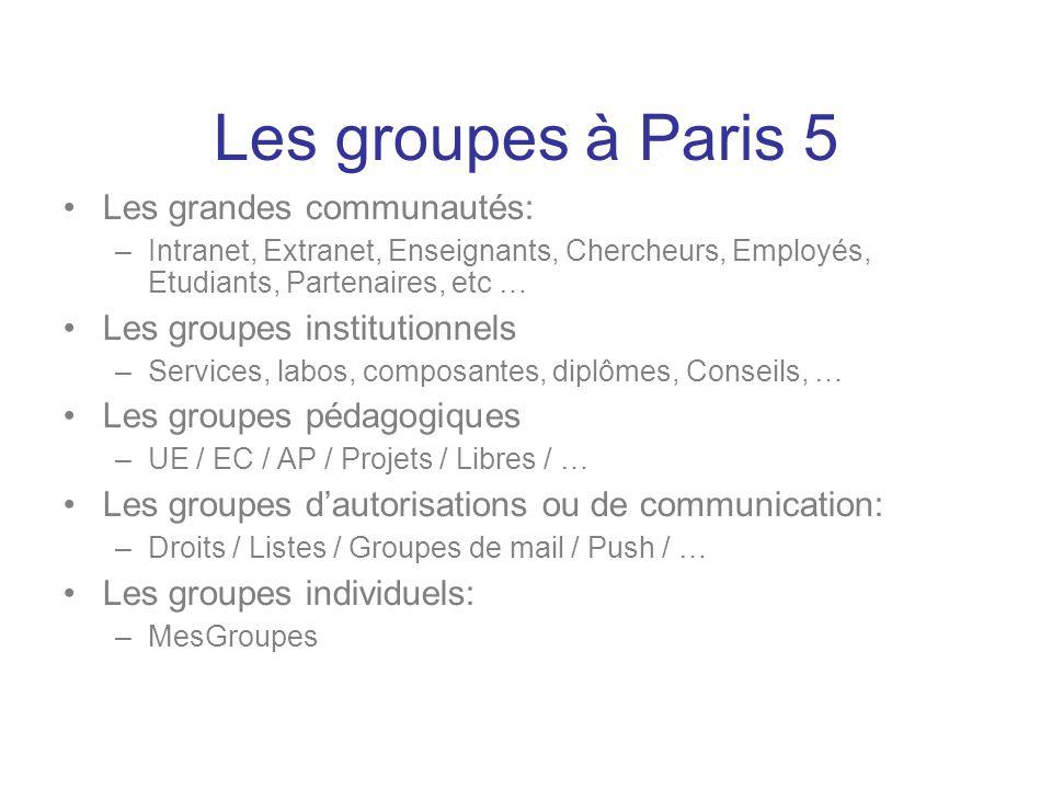 Les grandes communautés: –Intranet, Extranet, Enseignants, Chercheurs, Employés, Etudiants, Partenaires, etc … Les groupes institutionnels –Services,