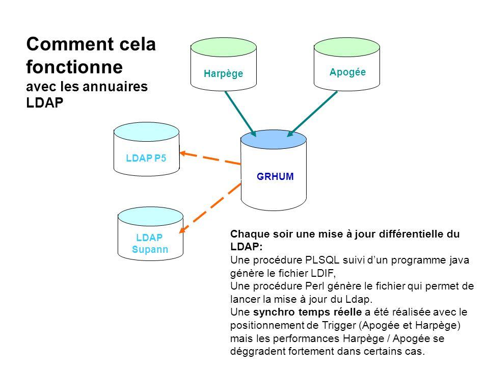 Harpège GRHUM Apogée LDAP P5 LDAP Supann Comment cela fonctionne avec les annuaires LDAP Chaque soir une mise à jour différentielle du LDAP: Une procé