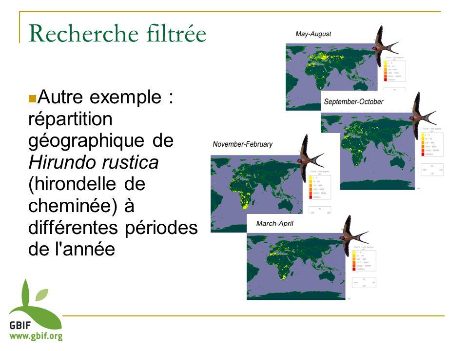 Recherche filtrée Autre exemple : répartition géographique de Hirundo rustica (hirondelle de cheminée) à différentes périodes de l année
