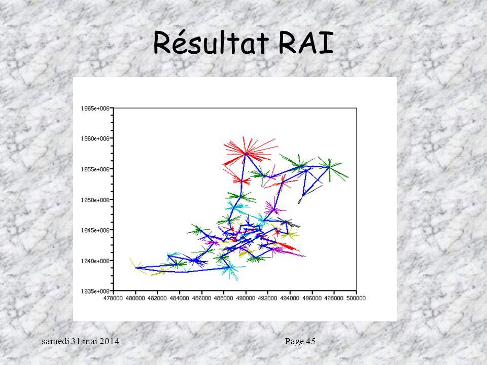 samedi 31 mai 2014Page 45 Résultat RAI