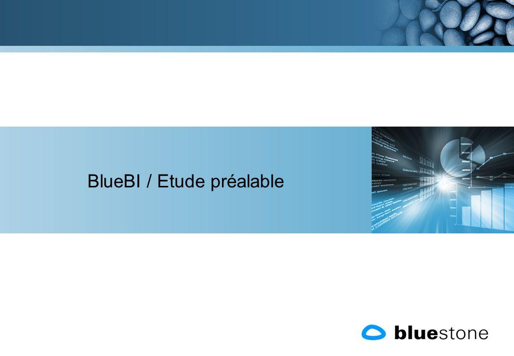 BlueBI / Etude préalable