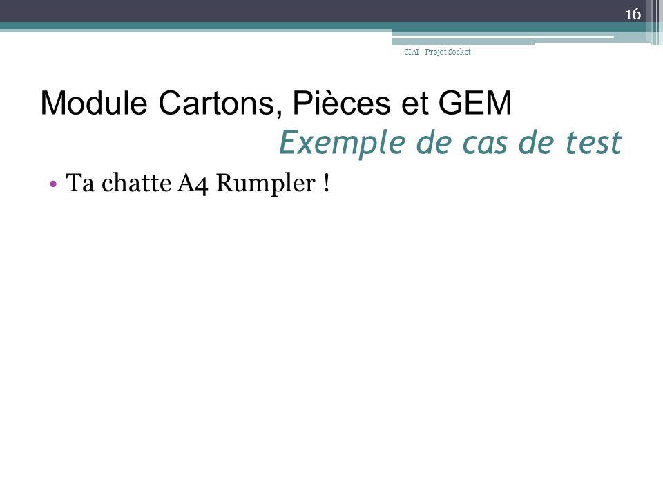 Module Cartons, Pièces et GEM Exemple de cas de test Ta chatte A4 Rumpler ! CIAI - Projet Socket 16
