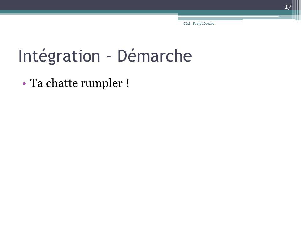 Intégration - Démarche Ta chatte rumpler ! CIAI - Projet Socket 17