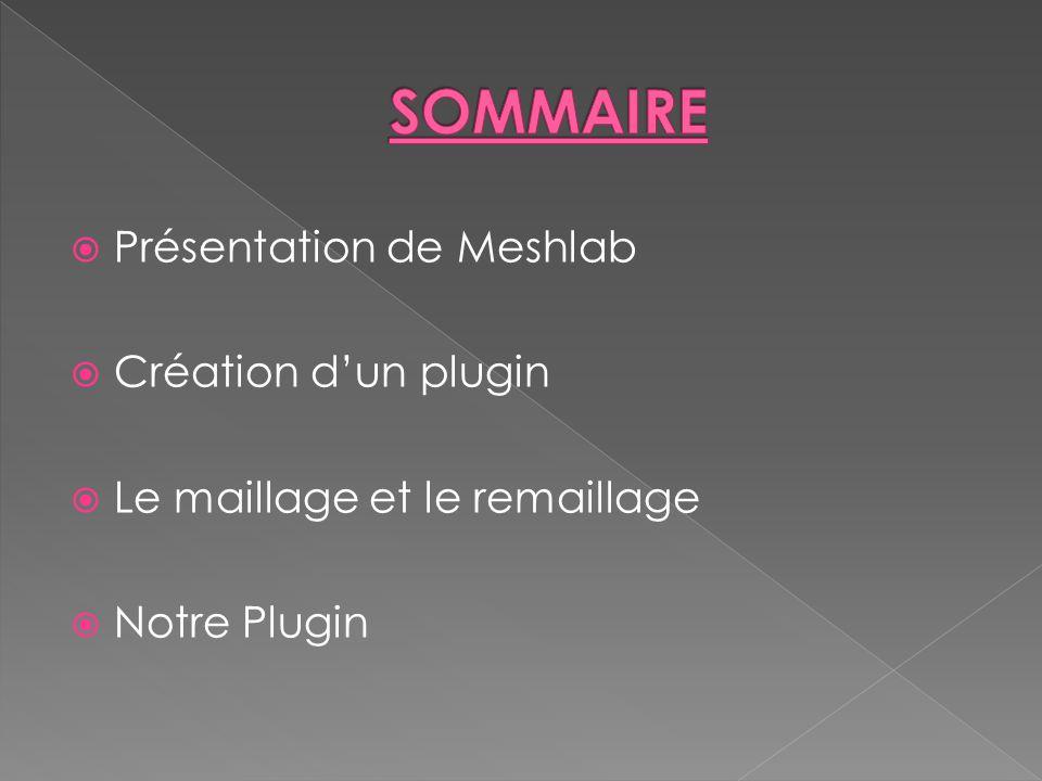 Présentation de Meshlab Création dun plugin Le maillage et le remaillage Notre Plugin
