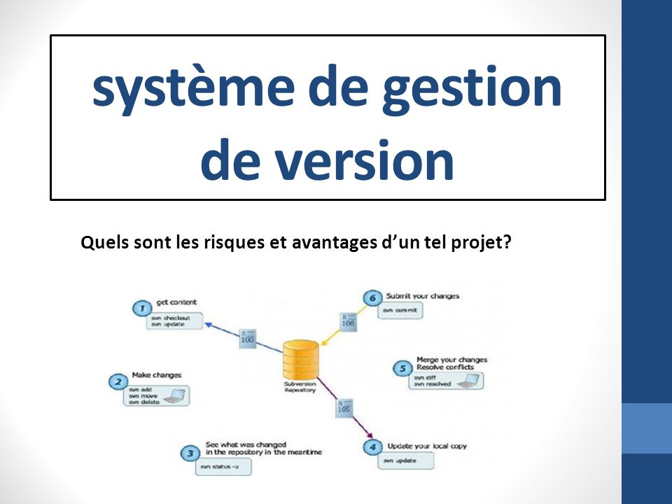 Plan de présentation Définition de la gestion de version Fonctionnement de loutil Dun point de vue technique