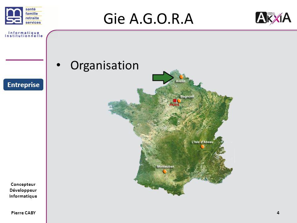 Concepteur Développeur Informatique Gie A.G.O.R.A Organisation 4Pierre CABY Sommaire Entreprise Projet