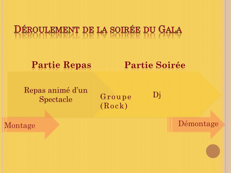 Repas animé dun Spectacle Repas animé dun Spectacle Dj Groupe (Rock) Montage Démontage