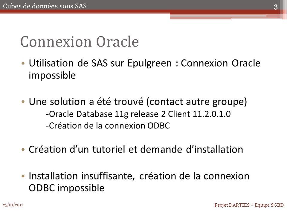 Connexion Oracle Connexion à la BDD Oracle, récupération des tables et stockage sous format SAS Travaille possible sur nos tables Possibilité de MAJ mensuel grâce à des procédures au moment du chargement des données.