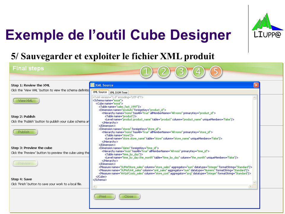 -45- Exemple de loutil Cube Designer 5/ Sauvegarder et exploiter le fichier XML produit