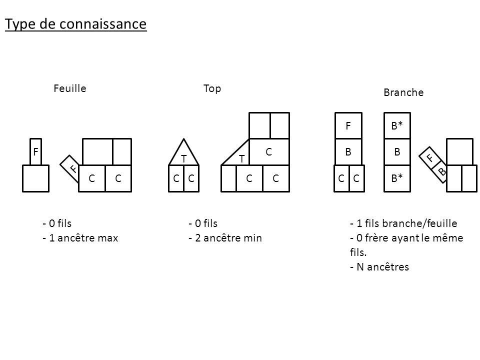 B F F CCC - 0 fils - 1 ancêtre max CCC C FeuilleTop - 0 fils - 2 ancêtre min Branche C B F C B B* - 1 fils branche/feuille - 0 frère ayant le même fil
