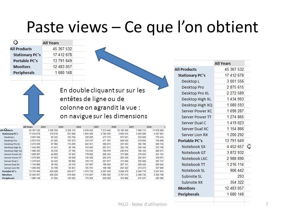 Paste views – Ce que lon obtient PALO - Notes d'utilisation7 En double cliquant sur sur les entêtes de ligne ou de colonne on agrandit la vue : on nav