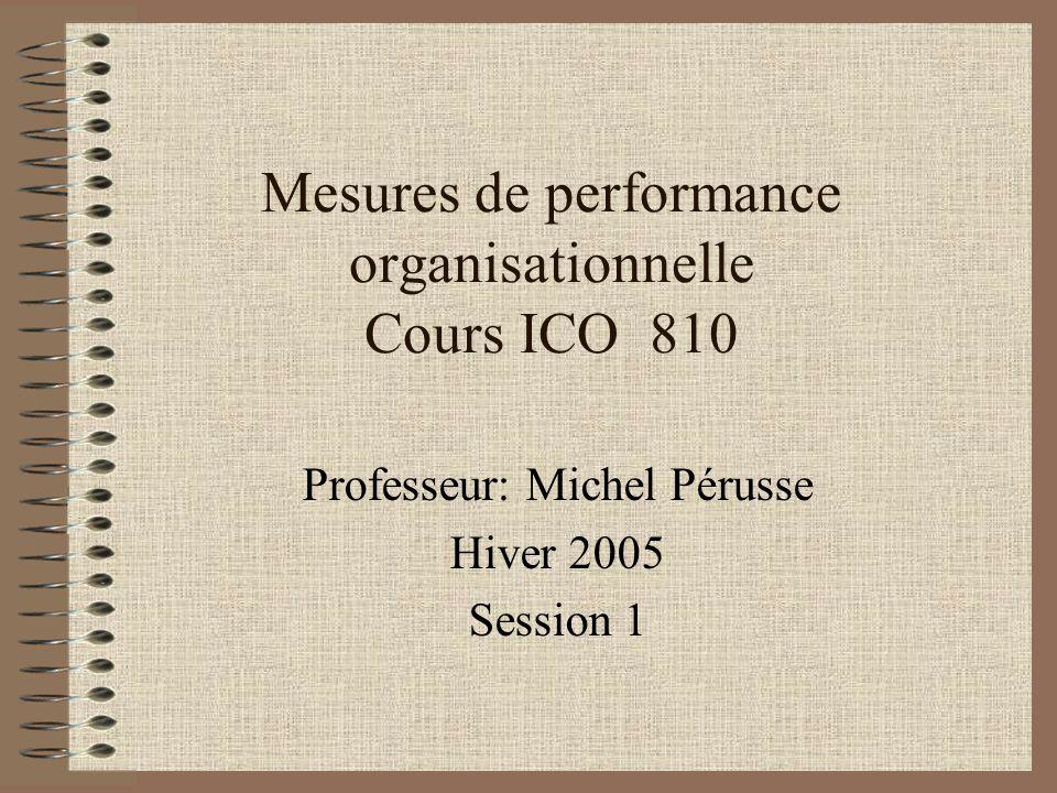 Mesures de performance organisationnelle Cours ICO 810 Professeur: Michel Pérusse Hiver 2005 Session 1