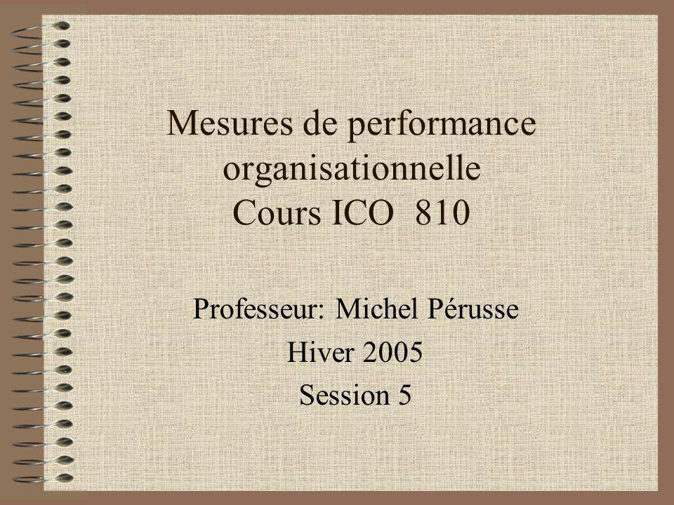 Mesures de performance organisationnelle Cours ICO 810 Professeur: Michel Pérusse Hiver 2005 Session 5