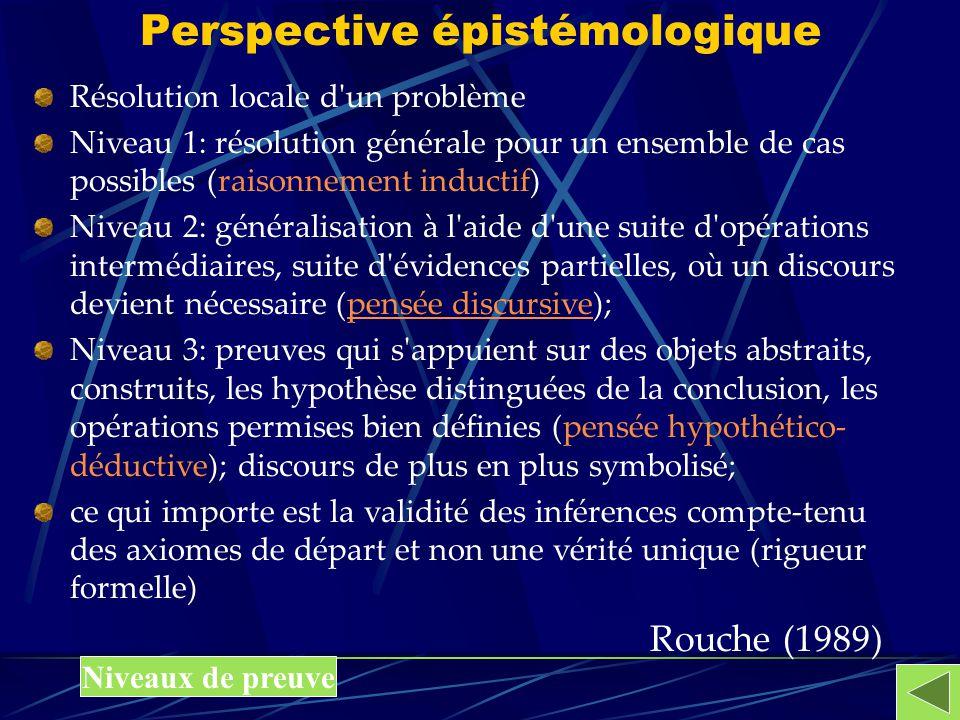 Perspective épistémologique Résolution locale d'un problème Niveau 1: résolution générale pour un ensemble de cas possibles (raisonnement inductif) Ni
