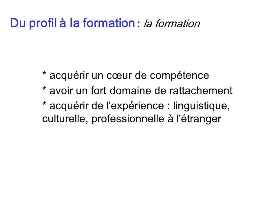 * acquérir un cœur de compétence * avoir un fort domaine de rattachement * acquérir de l expérience : linguistique, culturelle, professionnelle à l étranger Du profil à la formation : la formation