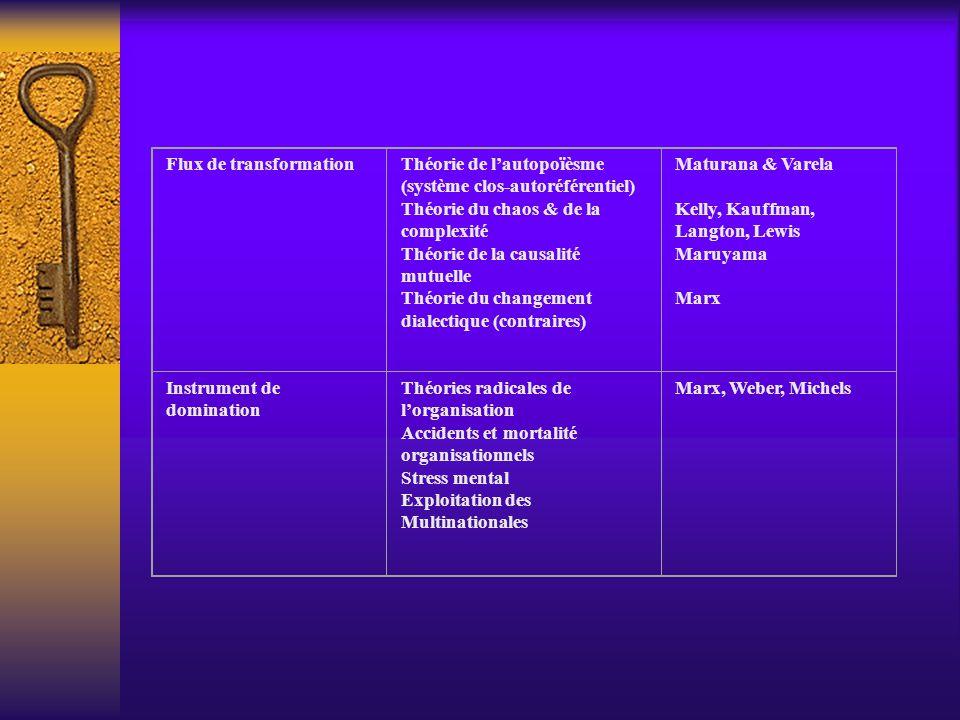 Flux de transformationThéorie de lautopoïèsme (système clos-autoréférentiel) Théorie du chaos & de la complexité Théorie de la causalité mutuelle Théorie du changement dialectique (contraires) Maturana & Varela Kelly, Kauffman, Langton, Lewis Maruyama Marx Instrument de domination Théories radicales de lorganisation Accidents et mortalité organisationnels Stress mental Exploitation des Multinationales Marx, Weber, Michels