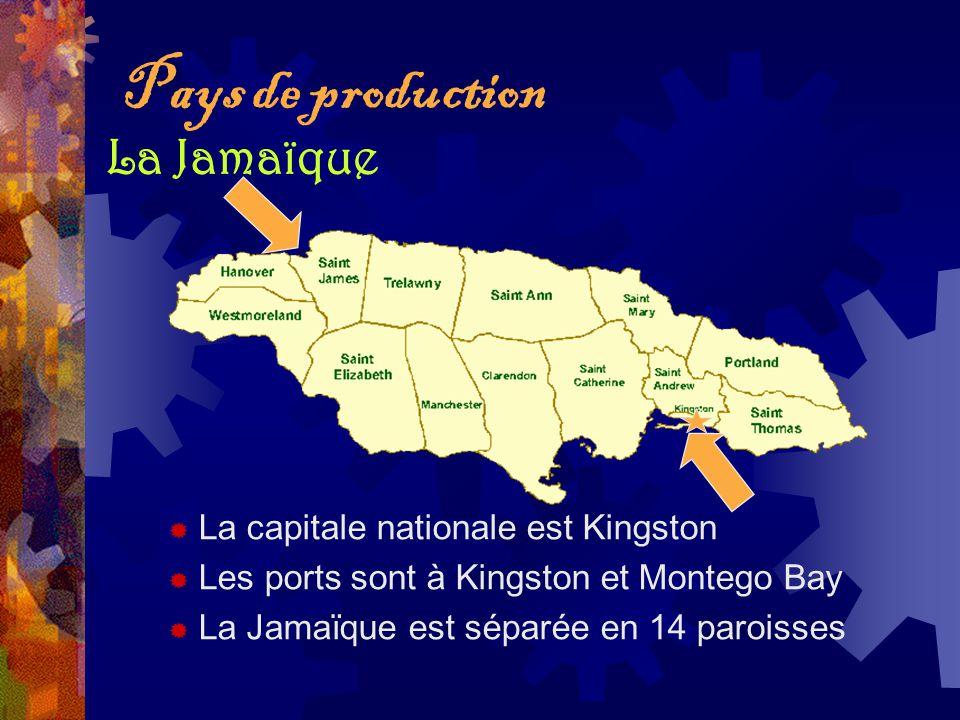 Pays de production La capitale nationale est Kingston Les ports sont à Kingston et Montego Bay La Jamaïque est séparée en 14 paroisses La Jamaïque