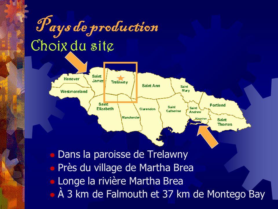 Pays de production Choix du site Dans la paroisse de Trelawny Près du village de Martha Brea Longe la rivière Martha Brea À 3 km de Falmouth et 37 km
