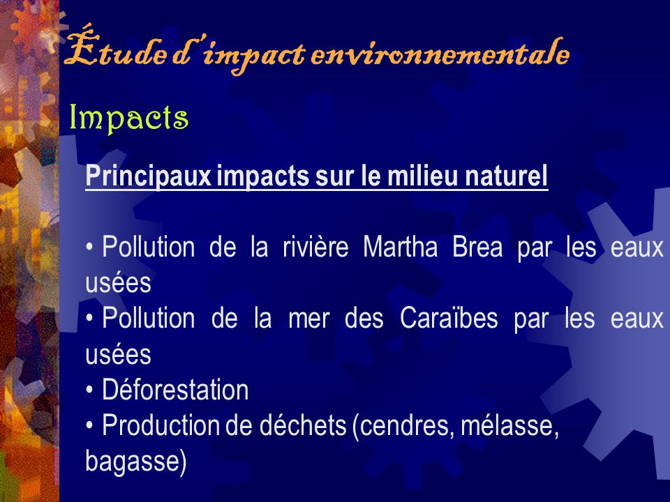 Impacts Étude dimpact environnementale Principaux impacts sur le milieu naturel Pollution de la rivière Martha Brea par les eaux usées Pollution de la