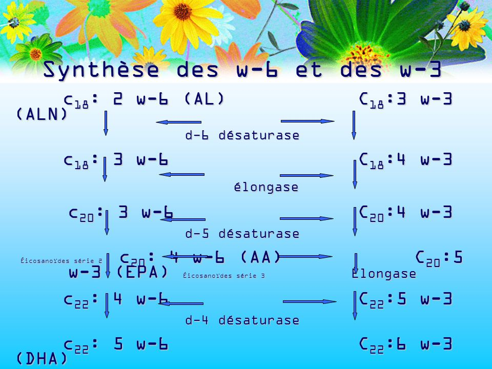 Synthèse des w-6 et des w-3 c 18 : 2 w-6 (AL)C 18 :3 w-3 (ALN) d-6 désaturase c 18 : 3 w-6 C 18 :4 w-3 élongase élongase c 20 : 3 w-6 C 20 :4 w-3 c 20