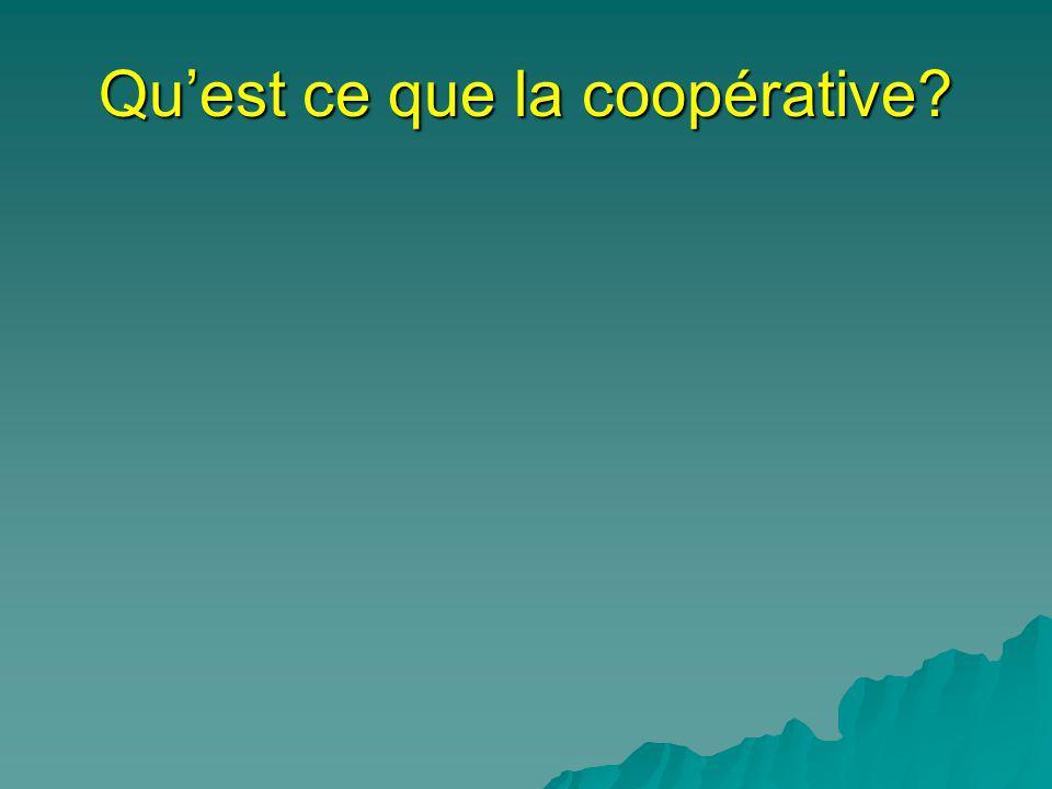 1-Le capital financier Les critiques touchent, en premier, le rôle du capital financier: ce nest pas dans le capital (investissement) que se situe la vraie richesse dune nation, mais dans la relation dusage.