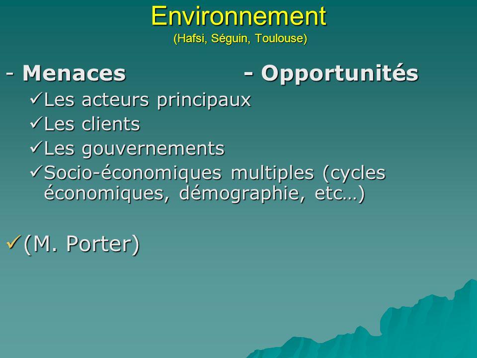 Environnement (Hafsi, Séguin, Toulouse) - Menaces- Opportunités Les acteurs principaux Les acteurs principaux Les clients Les clients Les gouvernement