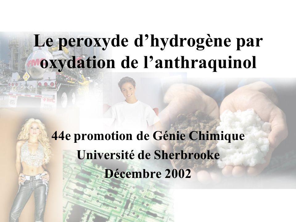 Analyses de sensibilité Facteur de nature de procédé –Production ou non dhydrogène Nature du procédéCoût($CA) / TM de peroxyde % TRAM Production dhydrogène108321.06 % Achat dhydrogène90840 %
