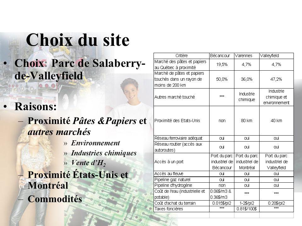 Choix du site Choix: Parc de Salaberry- de-Valleyfield Raisons: –Proximité Pâtes &Papiers et autres marchés »Environnement »Industries chimiques »Vent