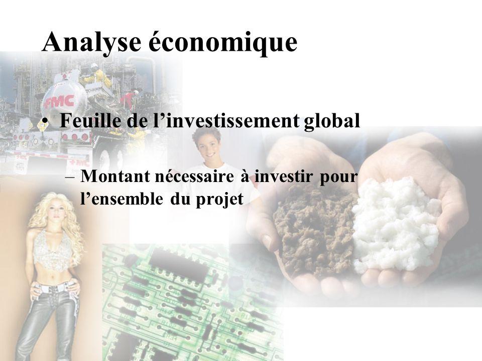 Analyse économique Feuille de linvestissement global –Montant nécessaire à investir pour lensemble du projet