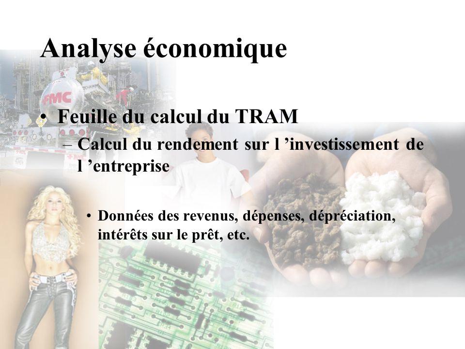 Analyse économique Feuille du calcul du TRAM –Calcul du rendement sur l investissement de l entreprise Données des revenus, dépenses, dépréciation, in