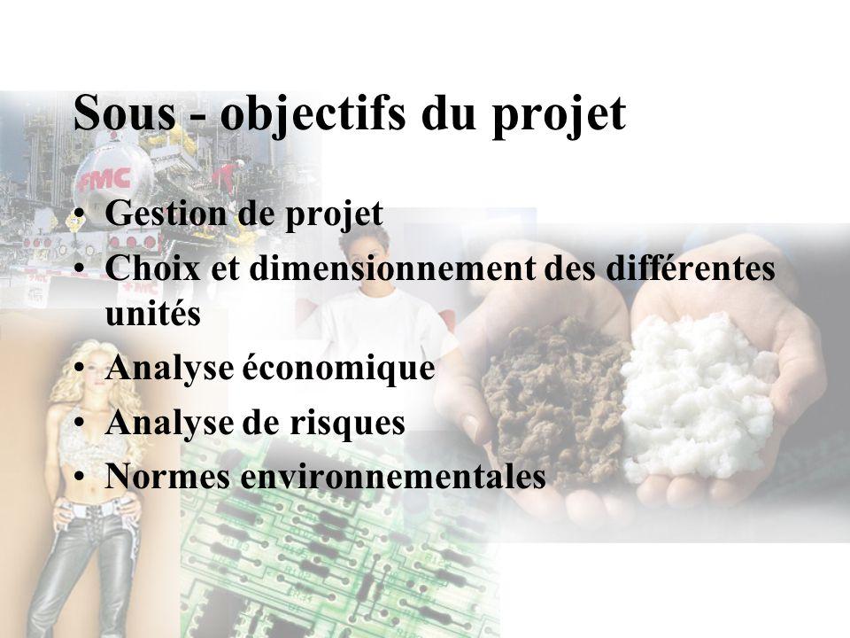 Sous - objectifs du projet Gestion de projet Choix et dimensionnement des différentes unités Analyse économique Analyse de risques Normes environnemen