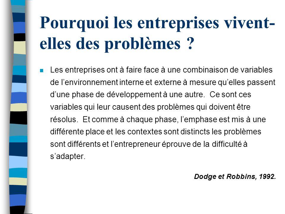Pourquoi les entreprises vivent- elles des problèmes ? n Les entreprises ont à faire face à une combinaison de variables de lenvironnement interne et