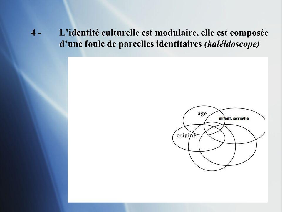 24 4 -Lidentité culturelle est modulaire, elle est composée dune foule de parcelles identitaires (kaléidoscope)