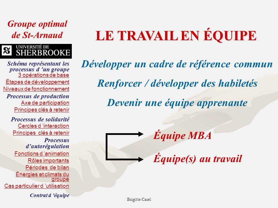 Brigitte Carel CAUSES EFFETS ANALYSE DU PROBLÈME Étape 1 - Bien définir le problème