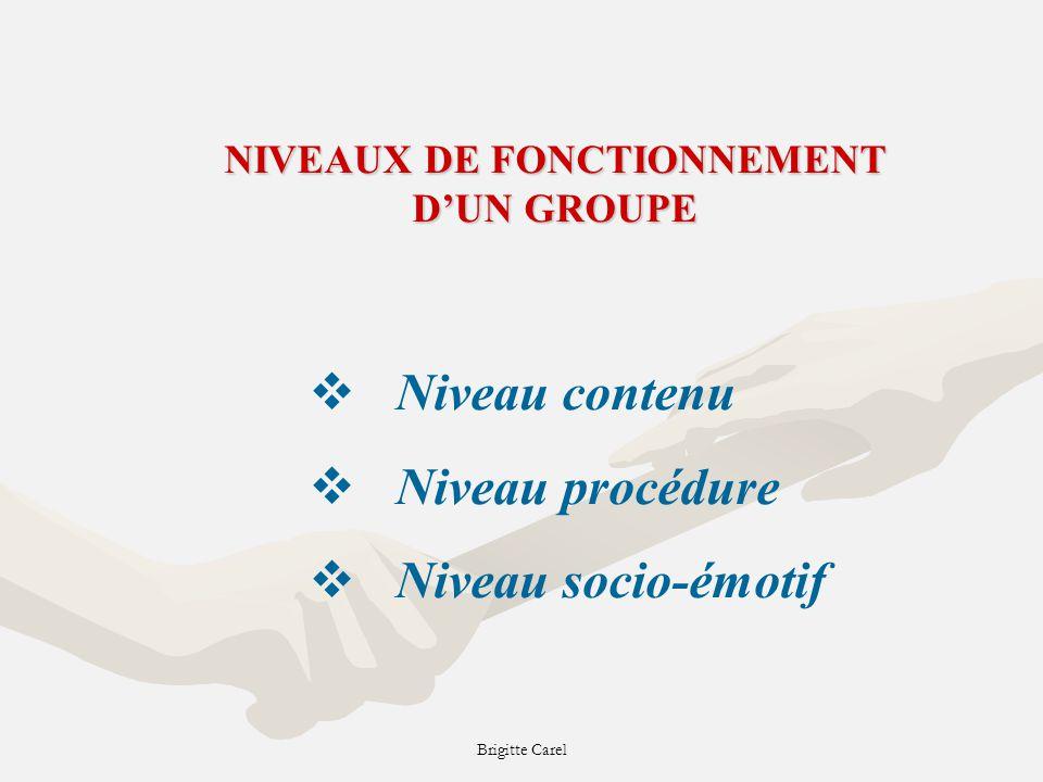 Brigitte Carel NIVEAUX DE FONCTIONNEMENT DUN GROUPE Niveau contenu Niveau procédure Niveau socio-émotif