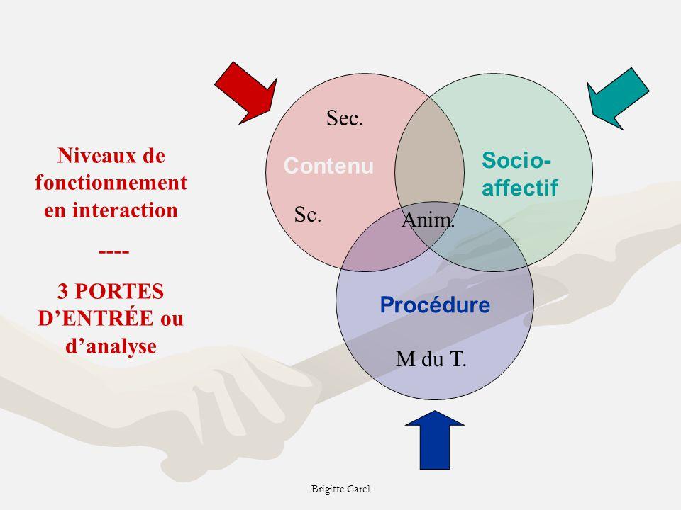 Brigitte Carel Niveaux de fonctionnement en interaction ---- 3 PORTES DENTRÉE ou danalyse Contenu Socio- affectif Procédure Anim.