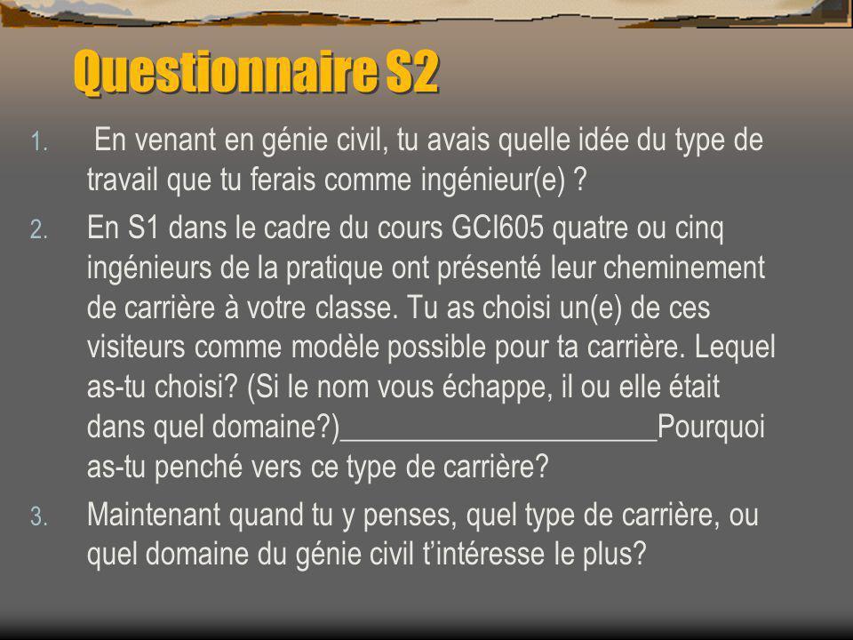 Questionnaire S2 1.