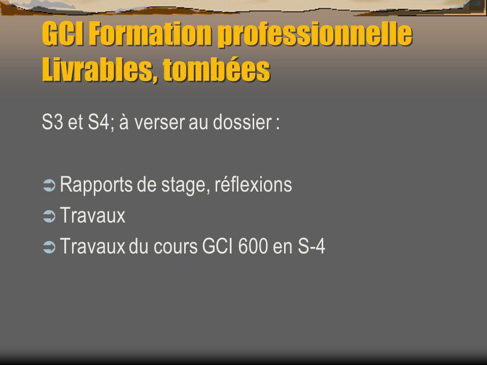 GCI Formation professionnelle Livrables, tombées S3 et S4; à verser au dossier : Rapports de stage, réflexions Travaux Travaux du cours GCI 600 en S-4