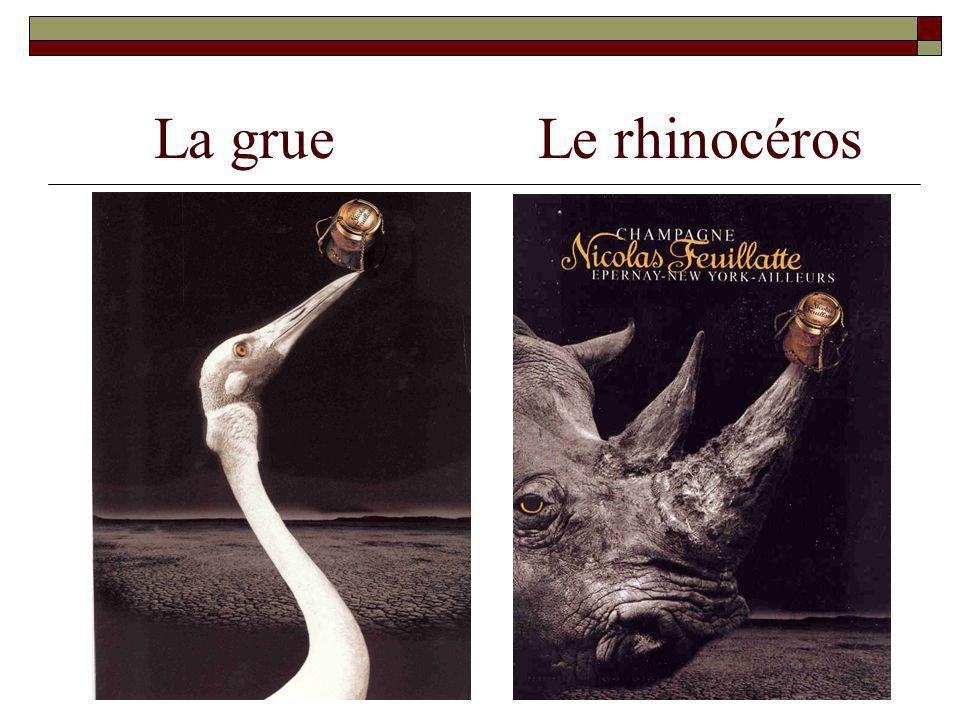 La grueLe rhinocéros