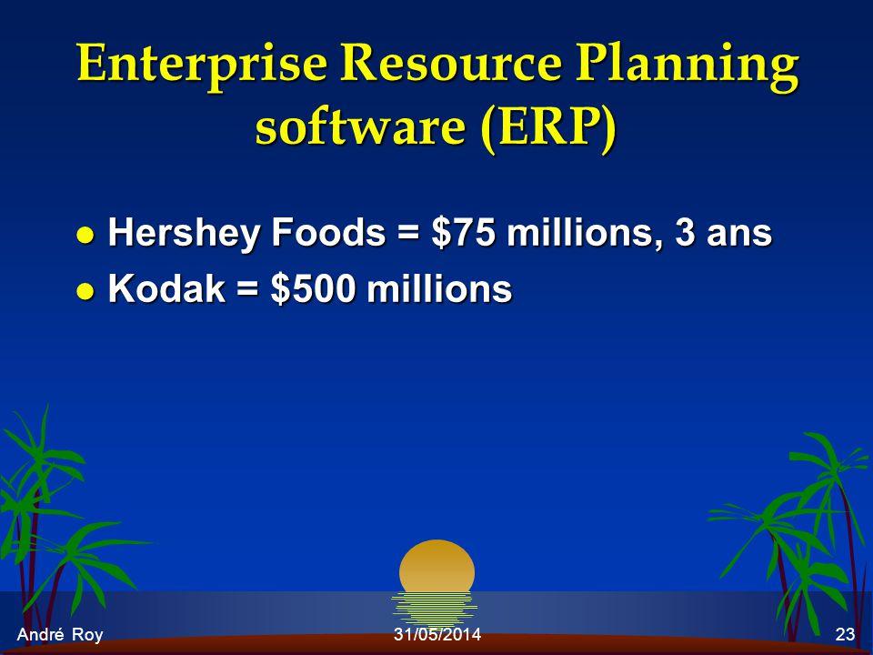 André Roy31/05/201423 Enterprise Resource Planning software (ERP) l Hershey Foods = $75 millions, 3 ans l Kodak = $500 millions
