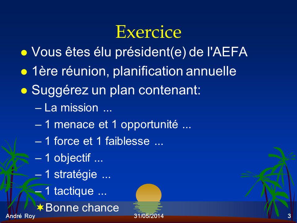 André Roy31/05/20143 Exercice l Vous êtes élu président(e) de l'AEFA l 1ère réunion, planification annuelle l Suggérez un plan contenant: –La mission.