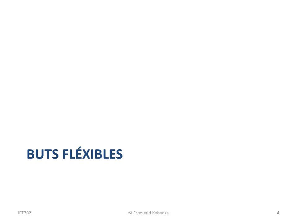 BUTS FLÉXIBLES IFT702© Froduald Kabanza4
