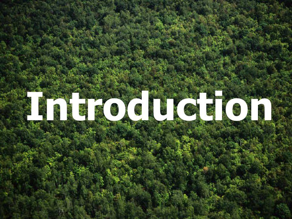 Plan de lexposé Introduction Technologie et équipement Simulation du procédé Environnement et choix du site Analyse économique Conclusion