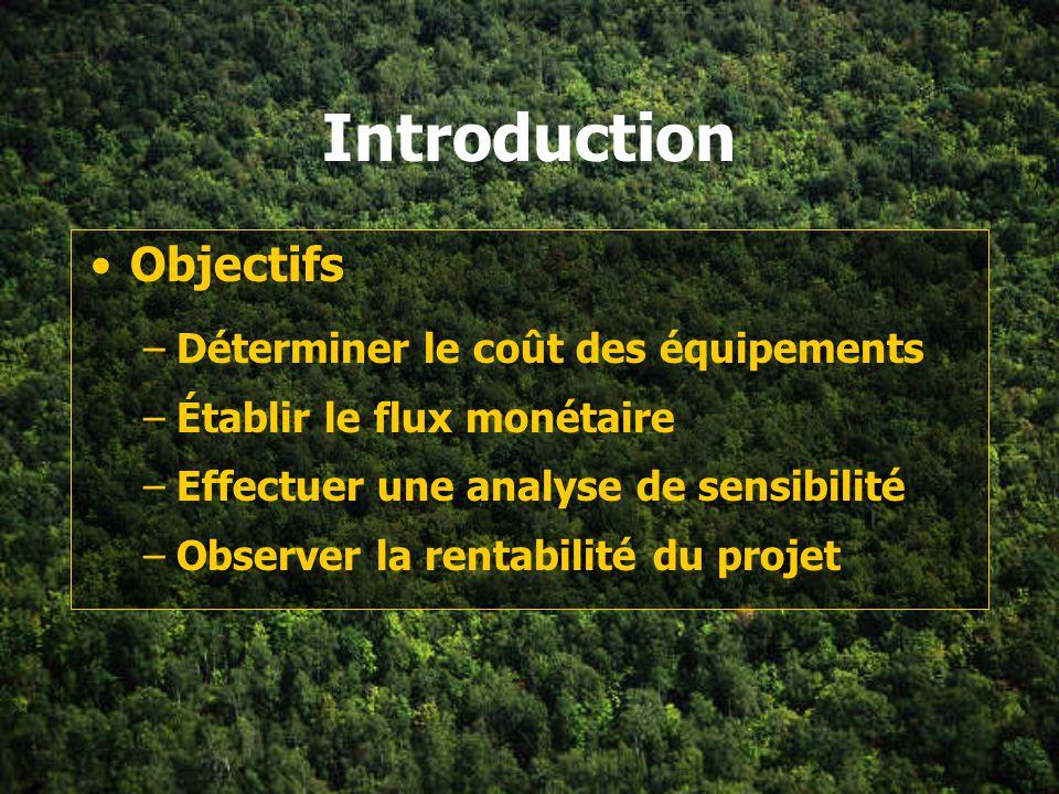 Plan de la section Introduction Coûts d investissement –Immobilisation coûts directs coûts indirects –Fonds de roulement Financement Revenus Flux moné