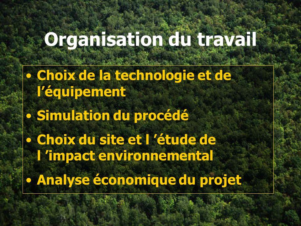 Organisation du travail Choix de la technologie et de léquipement Simulation du procédé Choix du site et l étude de l impact environnemental Analyse économique du projet