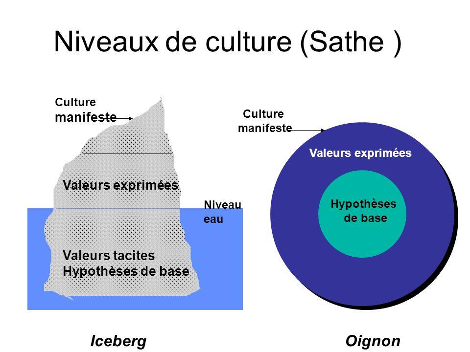 Niveaux de culture (Sathe ) Niveau eau Valeurs tacites Hypothèses de base Valeurs exprimées Culture manifeste Hypothèses de base Valeurs exprimées Cul