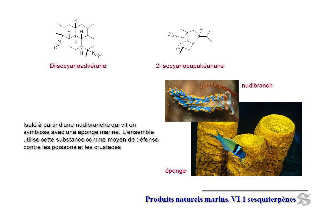 Diisocyanoadvérane 2-Isocyanopupukéanane Isolé à partir d'une nudibranche qui vit en symbiose avec une éponge marine. Lensemble utilise cette substanc
