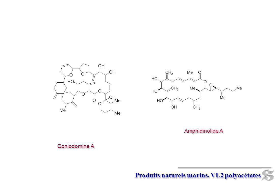 Goniodomine A Amphidinolide A Produits naturels marins. VI.2 polyacétates