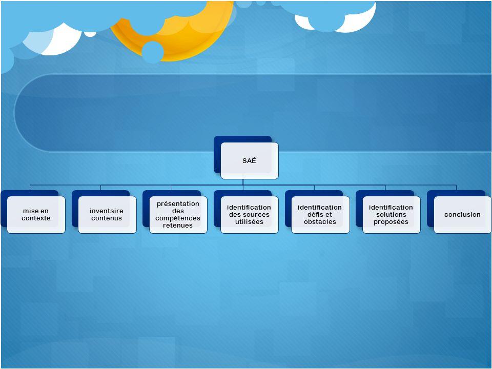critères évaluation SAÉ pertinence contenus et stratégies cohérence dans organisation démarche qualité conclusion qualité langue disposition références liens effectués avec études